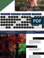 11-ing-Forestal