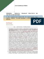 1ER. TRABAJO - SUBRAYADO (1) UCSM