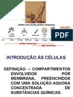 Biologia_EF_celulas_evolucao
