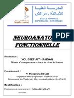 Neuroanatomie fonctionnelle