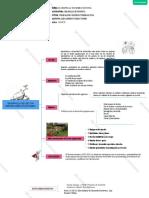 Practica1 mapa conceptual alex
