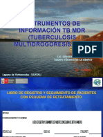 TEMA 17° INSTRUMENTOS DE INFORMACION TBMDR-18-08-11