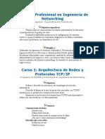 Ingenieria en Networking