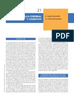 2008_Capilla_Pérez_Desarrollo cerebral y cognitivo (1)