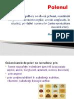 Polenul PPT