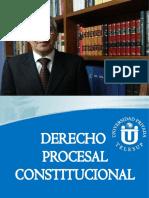 Libro Derecho Procesal Constitucional