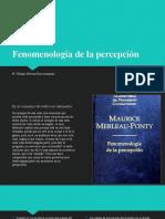Fenomenología de la percepción