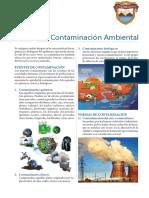 Contaminación-Ambiental-1sec