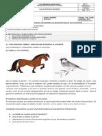 GUIA 3 MATEMATICAS 5 . (1)