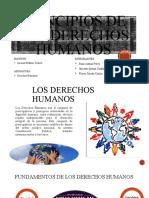 GRUPO_3_PRINCIPIOS DE LOS DERECHOS HUMANOS