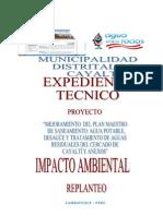 ESTUDIO DE IMPACTO AMBIENTA REPLANTEO
