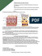 DERMATOLOGIA EM CÃES E GATOS pdf