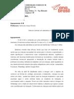 C Plano de ação relatorio Abril