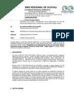 Informe  TECNICO N° 014 -Extensionista- JUNIOCARLOS SULCA
