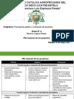 T5 PNI de los proyectos