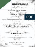 Op. 105 Variations sur un Air favori Irlandais