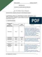 UN2ALEX BIBETO RAMOS MAQUERA - PRACTICA 01-02