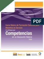 Curso Basico El Enfoque Competencias 2009