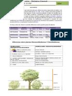 Documento Morfologia vegetal jgarcia 2014