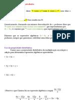 Expressões Algébricas Equivalente - 18-06
