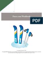 51523786-salesforce-workbook1