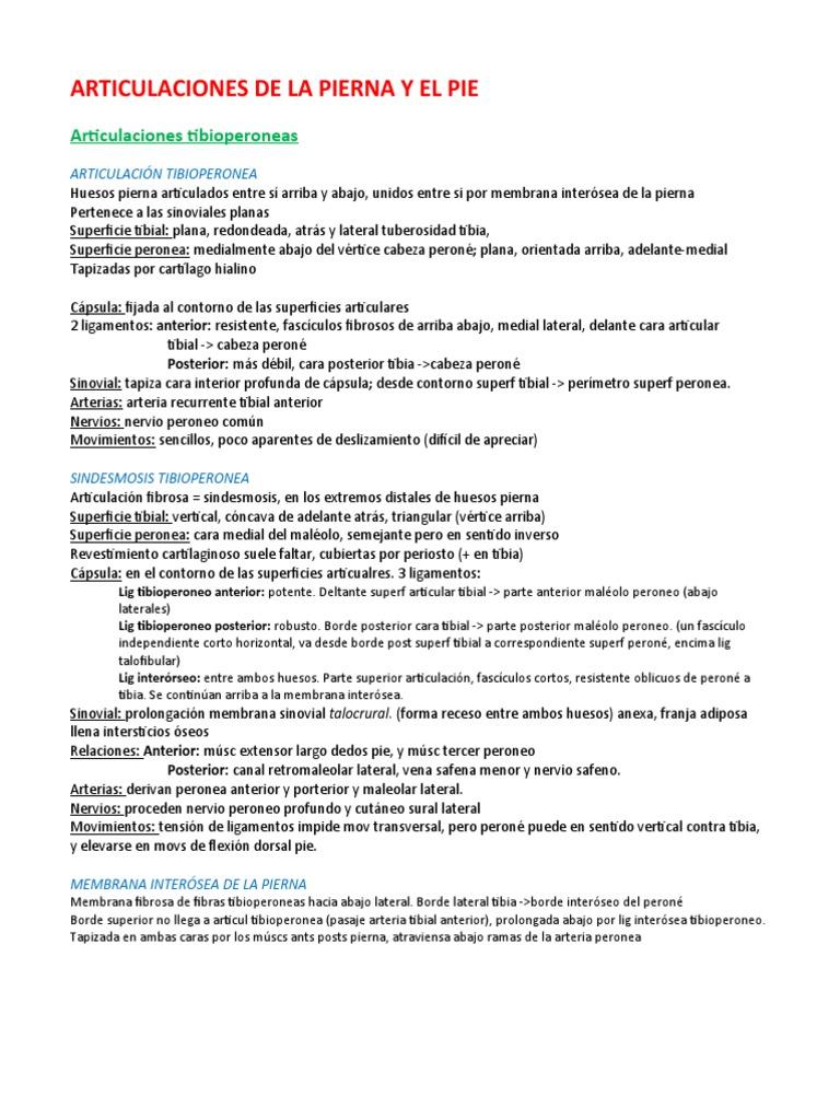 ARTICULACIONES DE LA PIERNA Y EL PIE
