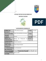 informe anual 2007r