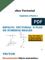 Algebra Vectorial P1.0 (1)