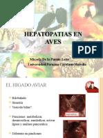 Hepatopatías en Aves