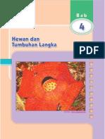 05 ipa_6_sd 4-pdf