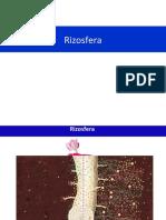 LSO_400 Biologia do Solo Aula 4-2014-Rizosfera
