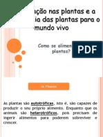 Como Se Alimentam as Plantas - Aula