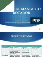 Lesion De Manguito Rotador R4
