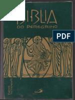 Novo Testamento - Bíblia Do Peregrino