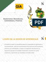 Biología Biomoleculas Proteinas Carbohidratos