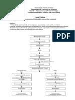 Fluxograma do processamento de suco e polpa1