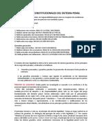 FUNDAMENTOS CONSTITUCIONALES DEL SISTEMA PENAL