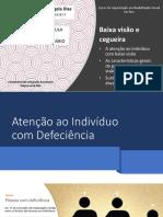 Baixa_visão_e_cegueira