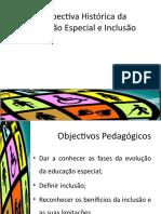 Perspectiva Histórica da Educação Especial. Inlcusão.