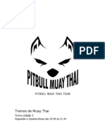 Treinos de Muay Thai