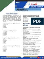 VERBAL PRECISION LEXICA Luis G