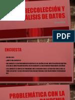 RECOLECCIÓN DE DATOS DAVID NÚÑEZ 6