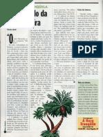 O exemplo da palmeira