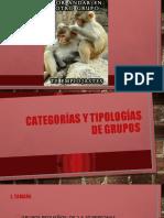Categorías y tipologías de grupos.pptx