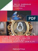 Maria en La Sagradas Escrituras P. Ovidio