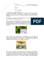 P0001_File_Principios b+ísicos de clasificaci+¦n