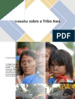 Tribo Awá Trabalho Mariana Botelho Machado turma 41