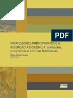 Livro - Professores Principiantes e a Inserção a Docencia - UFTPR