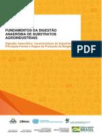 Digestão Anaeróbica_ Características Do Substrato, Principais Fontes e Etapas Da Produção de Biogás.