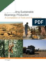 Produccion sustentable de Bioenergeticos